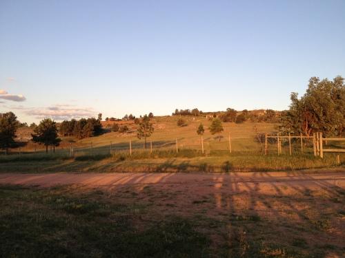 Sun setting over the vineyard