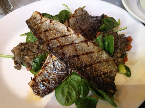 Grilled fish & lentil salad